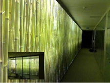 Lumiwall in Corridor of French Law Firm